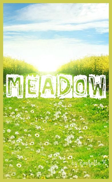 Baby Girl Name: Meadow. http://www.pinterest.com/vintagedaydream/baby-names/