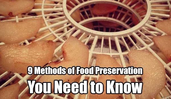 9 Methods of Food Preservation You Need to Know - SHTF, Emergency Preparedness, Survival Prepping, Homesteading