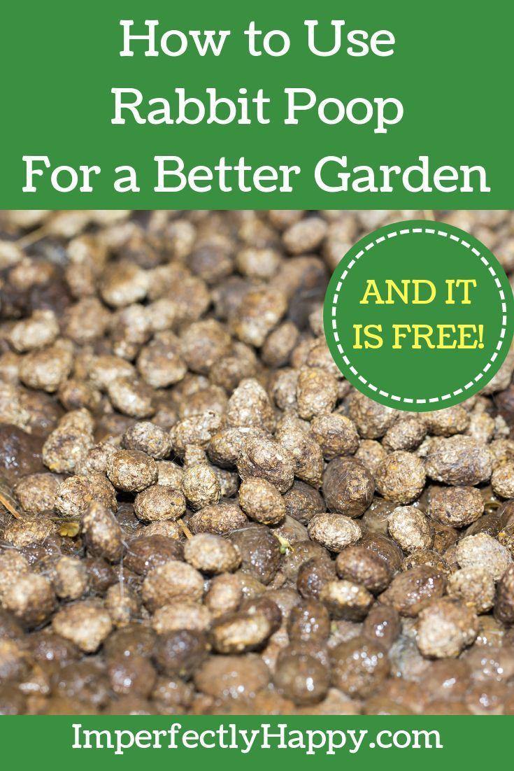 Rabbit Poo//manure//fertiliser