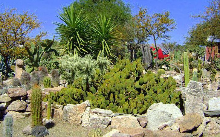 Museo Comechingon y Jardin Botanico de Cactus de Mina Clavero Cordoba Argentina... https://www.facebook.com/media/set/?set=a.10202460576408431.1073742801.1014978408&type=1&l=eafaf8fed8 __________ Trabajo conjunto de Alberto y Marcela: Alberto Cubría: https://www.blogger.com/profile/09627758956283212096 Marcela Carranza: https://www.facebook.com/marcela.carranza.77