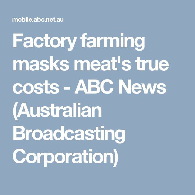 Factory farming masks meat's true costs - ABC News (Australian Broadcasting Corporation)