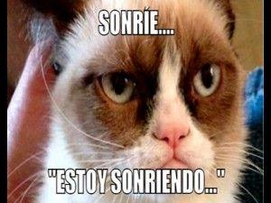 Mejores memes en espanol de Grumpy Cat (1)