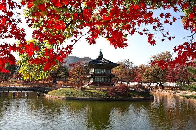 Musim Gugur di Korea Les Bahasa Korea di Jogja KCC Sejong