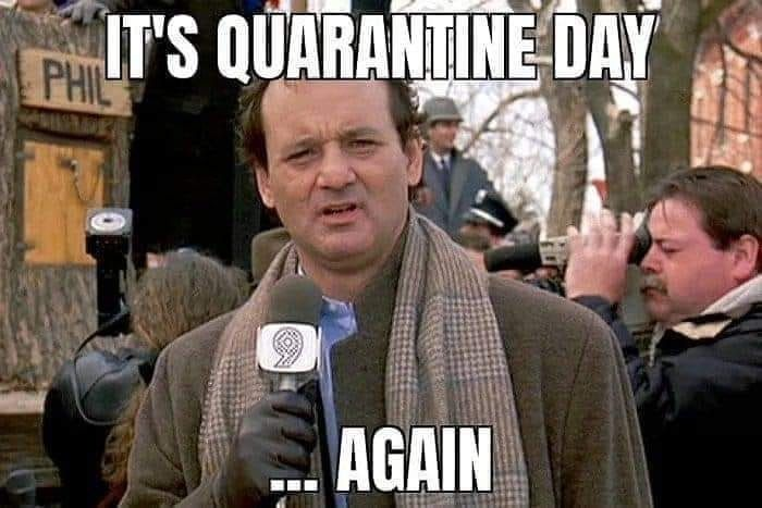 Pin By Amanda Skillington On Corona Madness Hilarious Funny Pictures Groundhog Day