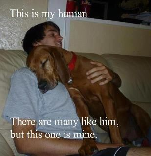 This is my human, so sweet!