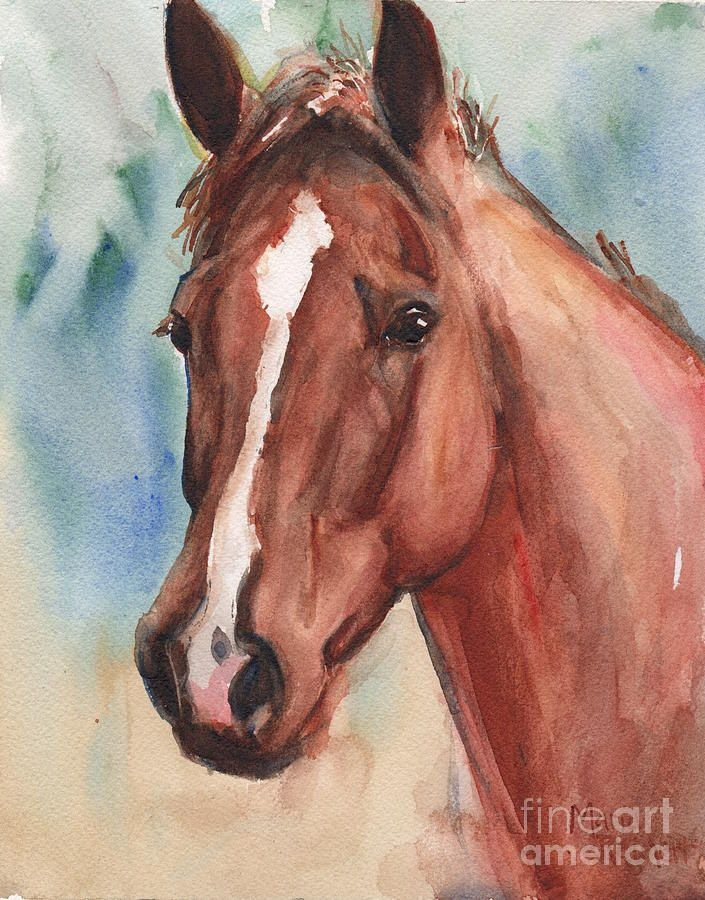Red Horse In Watercolor by Maria's Watercolor