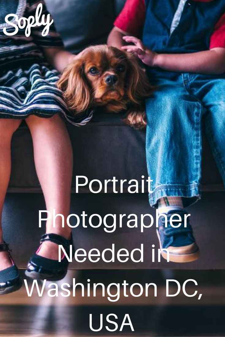 Portrait photographer needed in Washington DC, USA. The family is a couple and their puppy. Apply by clicking the pin!
