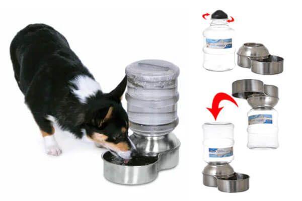 愛犬家に評判の良い犬用水入れ容器おすすめ7選決定版 Inunavi いぬなび ペットフード 愛犬家 犬
