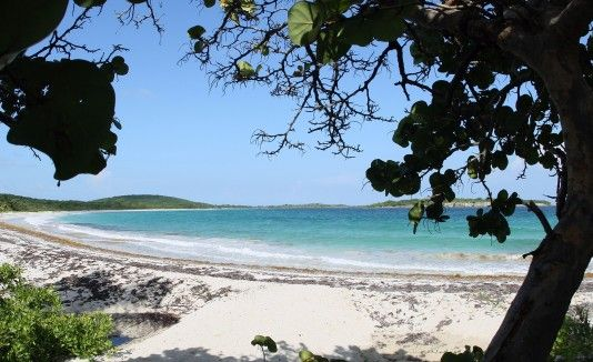 8 playas escondidas para visitar en Puerto Rico.  8 hidden beaches in Puerto Rico.