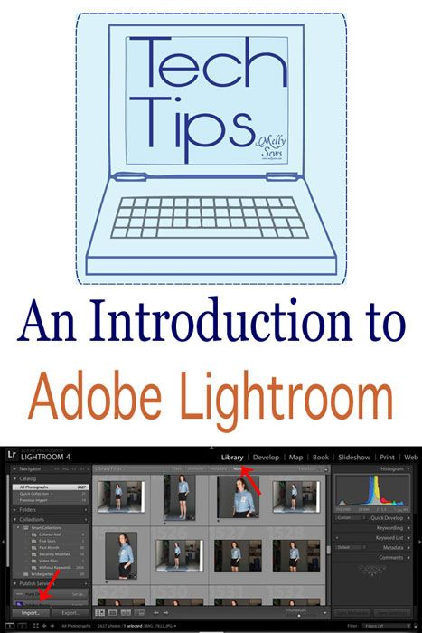 Tech Tips - a Lightroom Primer - Melly Sews