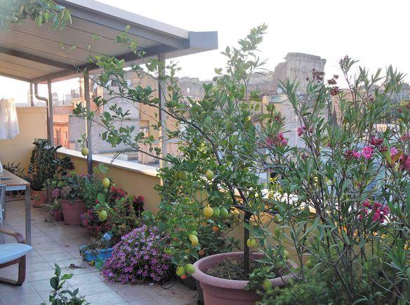 Échange de maisons gratuit Roma, Italie