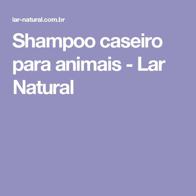 Shampoo caseiro para animais - Lar Natural