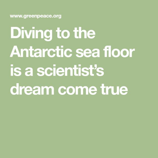 Diving to the Antarctic sea floor is a scientist's dream come true
