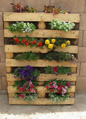 For Roxanne. Pallets vertical garden by closing it in with landscaping material,