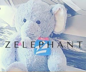 There is a Zelephant in The Room - https://www.thehouseagent.com/there-is-a-zelephant-in-the-room/ https://www.thehouseagent.com/wp-content/uploads/2018/02/Zelephant_001-300x251.jpg  Zillow Estimates: Not As Accurate As You Think   Zillow's property-value estimates, called Zestimates, are a popular consumer tool for seeing how much homes are worth.      Whether you're curious about how much your home's value has changed, wondering if your home'sappraised valueis h