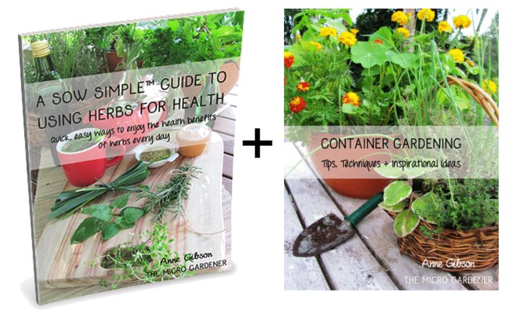 the gardeners a-z guide to growing organic food