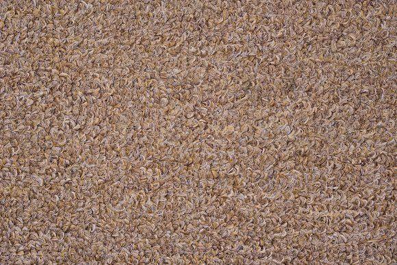 Light Brown Carpet Texture Textured Carpet Style Carpet Brown Carpet