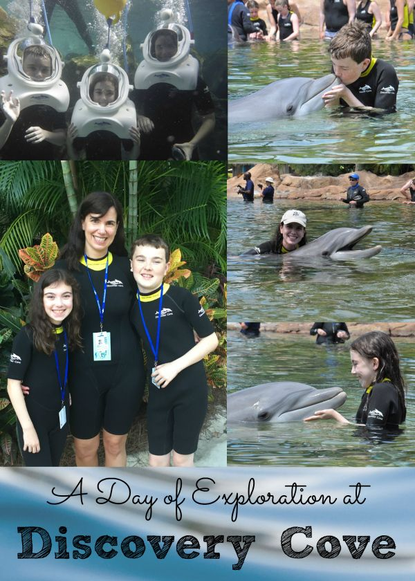 Family Travel Review: A Day of Exploration at Discovery Cove. Read about our experience and our tips and tricks to enjoy your dolphin swim, snorkeling and more!