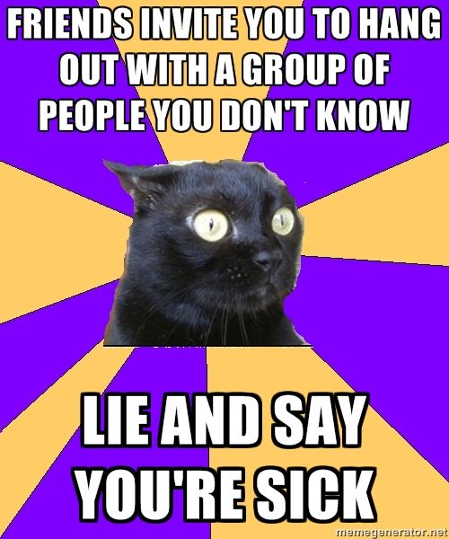 anxiety cat.  Except I don't lie anymore, I just tell them the truth:  I don't like people. HAHA