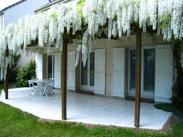 25 best ideas about wisteria pergola on pinterest modern pergola wisteria trellis and wisteria - Pergola voor glycine ...