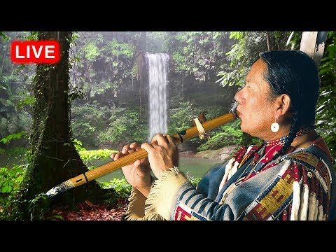 Native American Flute Music and Rain LIVE - Relaxing, Sleep