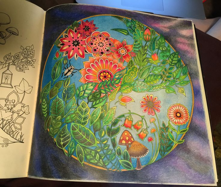 Coloring In Johanna Basfords Enchanted Forest By Jody Marx