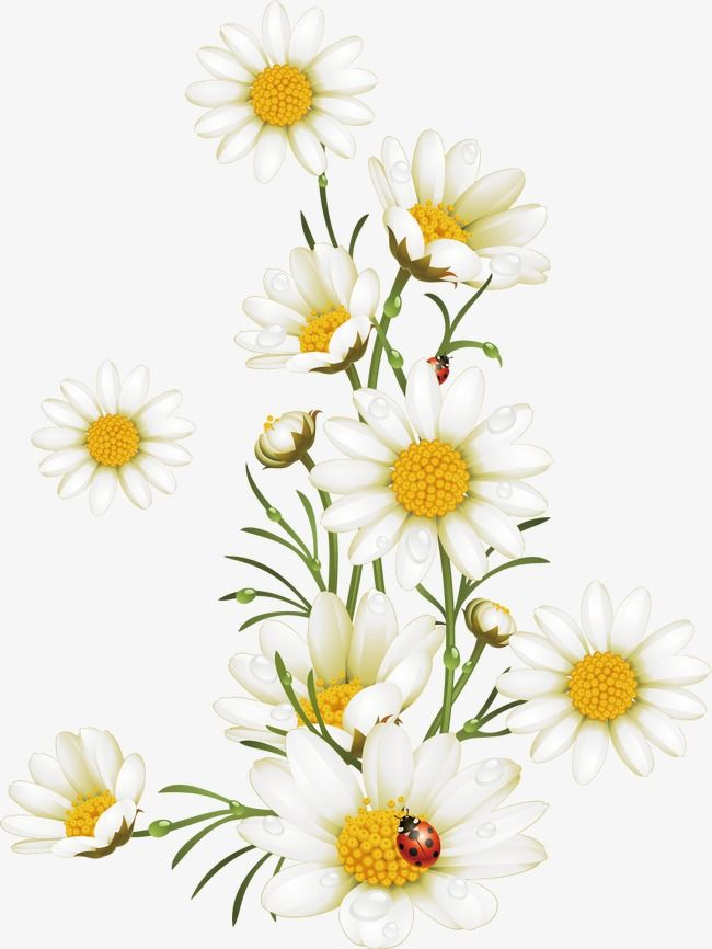 Flowers Painted Pattern Painted Flowers Vector Hand Painted Vector