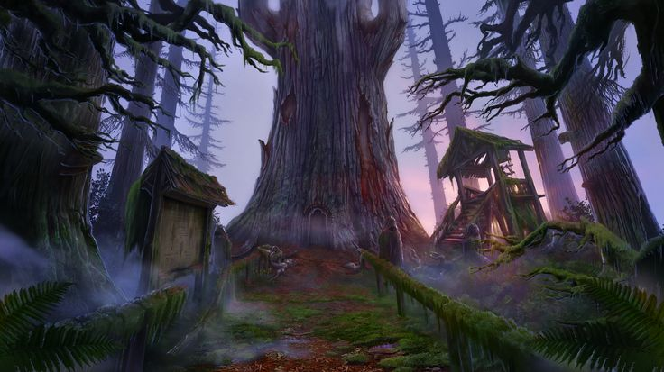 Enigmatis: The Mists of Ravenwood - A Giant Sequoia www.artifexmundi.com/page/enigmatis2 #tree #ravenwood #redwood #park #entrance #game #adventure https://www.facebook.com/ArtifexMundi.Enigmatis