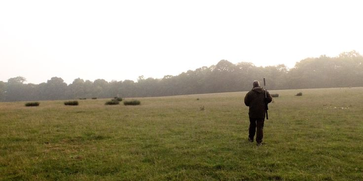 It's venison season and instead of heading to the local butcher, Eliot from Great British Chefs, joined a chef to discover his love for ethical hunting and world class dining.