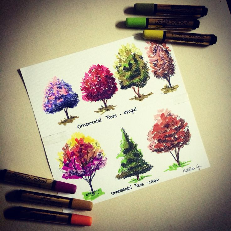 Trees sketches Markers Architecture