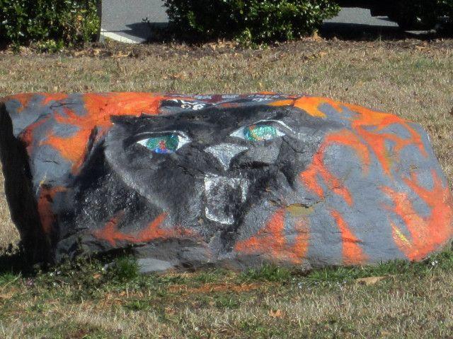 Charlotte Panthers! - School Spirit Rocks - Charlotte, NC 2/13