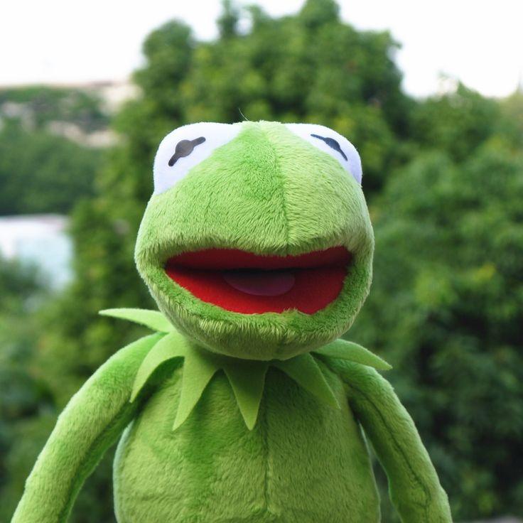 Купить товарЛягушонок кермит Маппет Шоу 14 ''40 см 2015 Кермит плюшевые игрушки Улица Сезам кукла животных Кермит лягушка, лягушка плюшевые куклы праздник в категории Набивные плюшевые игрушкина AliExpress. категория: лягушкатехнические характеристики: 40 СМматериал: Плюшплюшевые Категория: короткая плюшеваябудь заполнения: Д