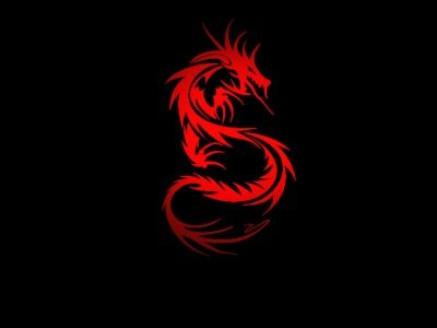 45 best images about dragon struck on pinterest iphone
