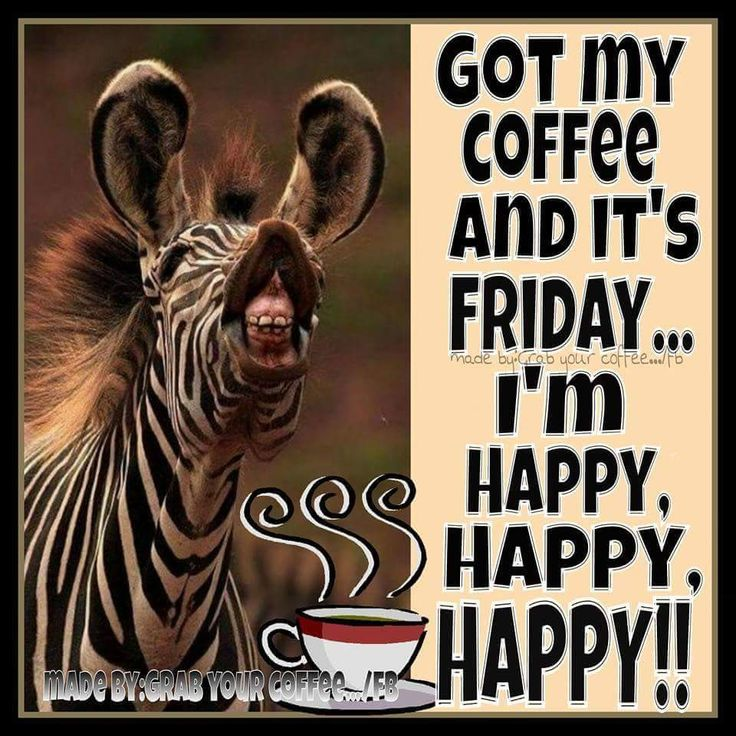 Giraffe meme Friday coffee quote.