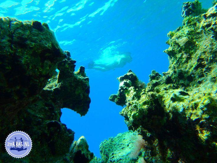 Snorkelen op de Griekse eilanden:Kreta biedt een prachtig onderwater landschap met veel verschillende vissen. Elke week organiseren we een snorkeldag. We hebben al het snorkel- en duikmateriaal zelf: maskers, flippers, snorkels, duikschoenen, camera's, lood, etc. We organiseren deze snorkelexcursie 1 keer per week, bijeen mooi rif aan het strand van Kokkini Hani. Deze leuke excursie