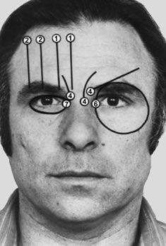 Le Facial Action Coding System permet de décrire les mouvements du visage et d'analyser les expressions faciales. Décrypter le langage du corps