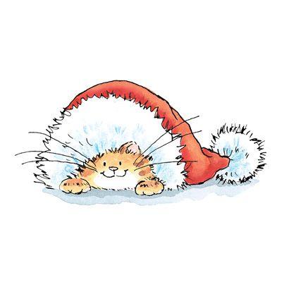 Cat in a Santa Hat!