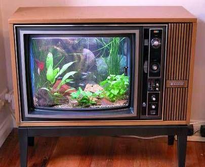 Vecchia TV trasformata in acquario - Foto: Aquahobby.com