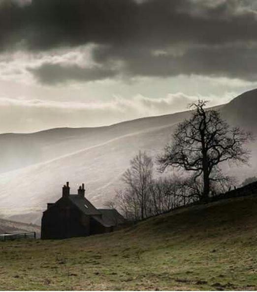 Scotland, highlands, mist