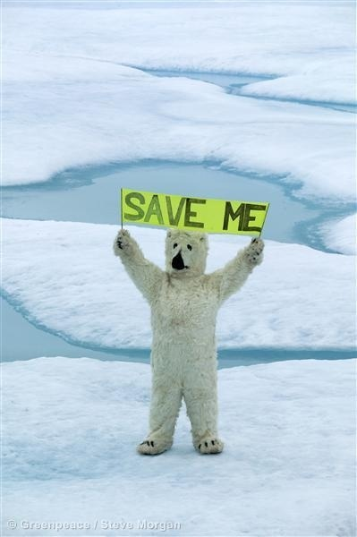 Save Me! Greenpeace - Save The Artic. Find out more here: http://www.savethearctic.org/ #savethearctic
