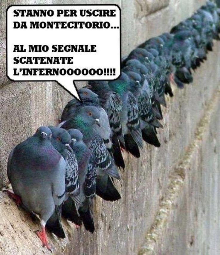 Ridere per ridere: Attacco a Montecitorio