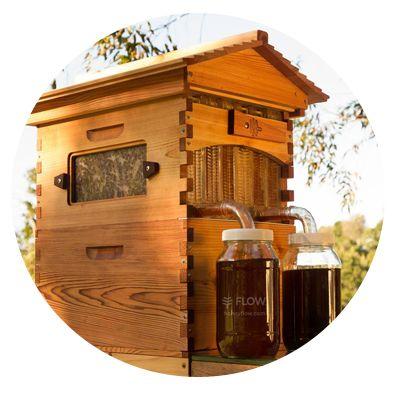 39 best Natural Beekeeping images on Pinterest Beekeeping, Bees - fresh apiary blueprint examples