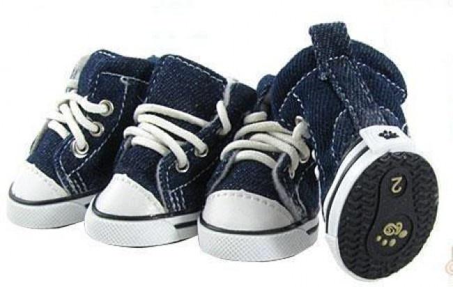Zapatillas para perros $ 70,00 en Buenos Aires http://www.alamaula.com/capital-federal/animales/zapatillas-de-jean-para-tu-mascota-iguales-a-tus-all-star/1599611