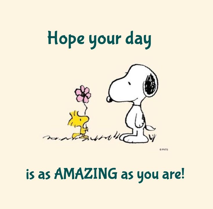 Snoopy • Hope Your Day is as Amazing as You Are!