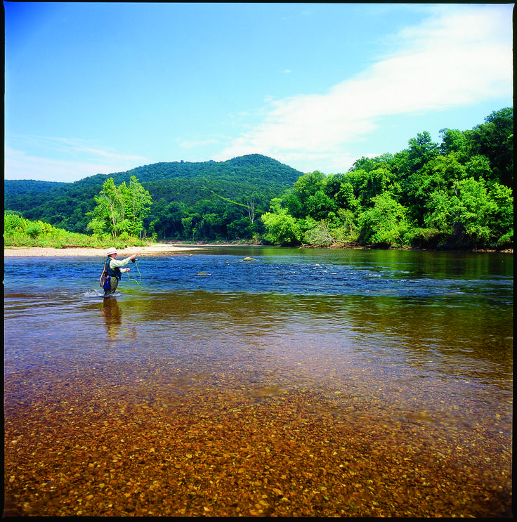 14 best images about fishing in arkansas on pinterest for Fishing in arkansas