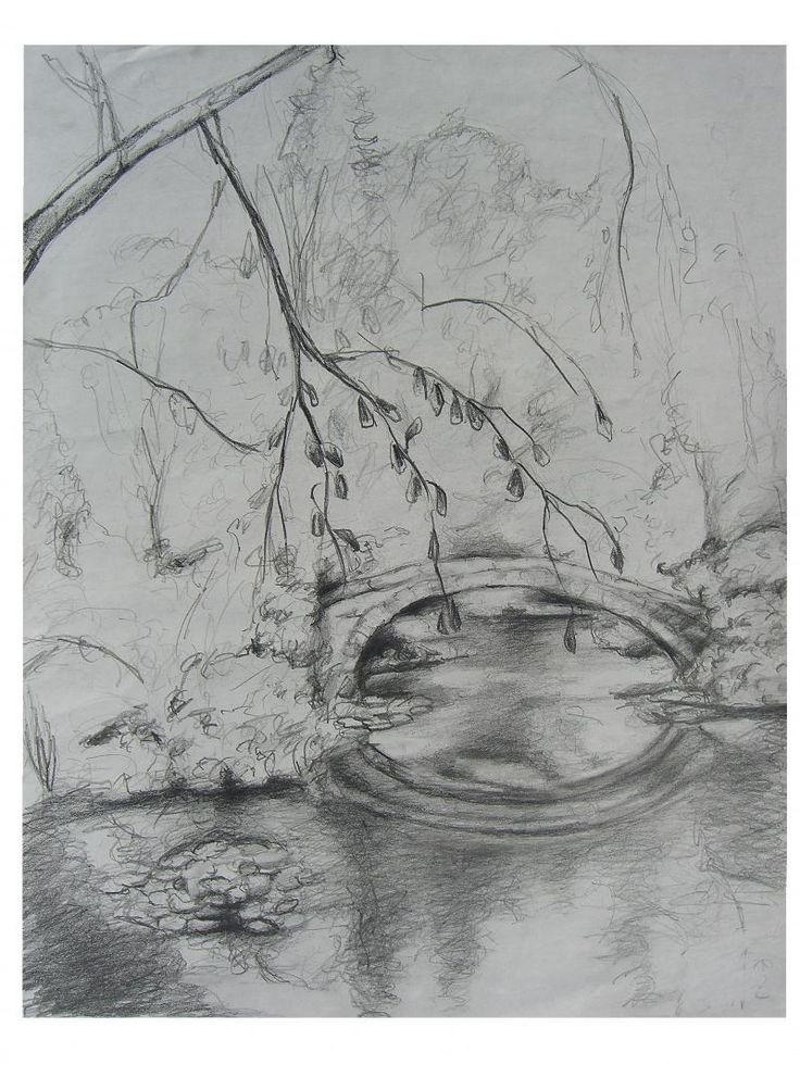 how to draw a pond with pencil