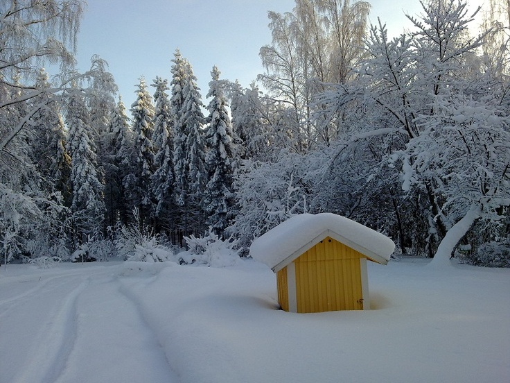 Kangasala, talvi 2010.