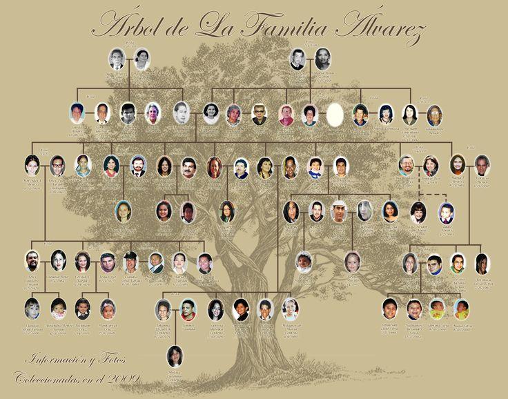 The 25+ best Family tree layout ideas on Pinterest Family tree - family tree template