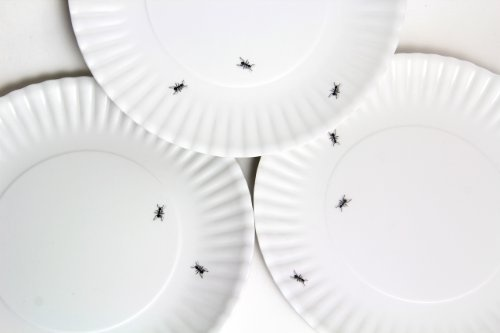 HD wallpapers buy corelle dinner set australia