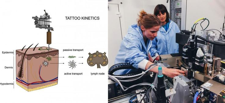 Scientists have shown that elements in tattoo ink can travel inside the body in micro and nanoparticle forms. Beamlines at the ESRF were used in an X-ray fluorescence technique to locate titanium dioxide, a common ingredient used in tattoo ink, in the skin and lymphatic environment. The data show strong evidence for both migration and long-term deposition of toxic elements and tattoo pigments. The next step for the team is to inspect more subjects with adverse effects from tattoos in order…